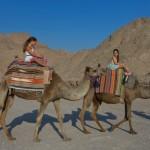 Kamelreiten in der Negev Wüste